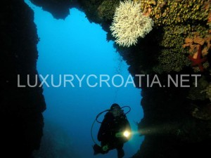 diving trip in middle Dalmatian aquatorium